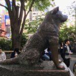 Věrnost je v Japonsku velmi ceněná ctnost. Oddanost psa Hačikó, který na svého pána čekal 9 let, dojímá i dnes.